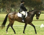 auster-spring-dressage-rmoore2-2011